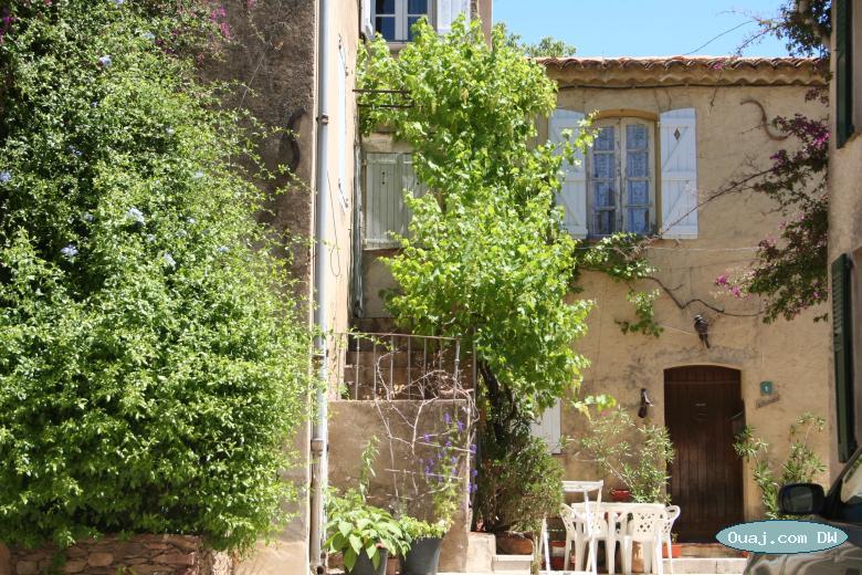 Cours interieur avec jardin et de la verdure petite table for Interieur cours nice