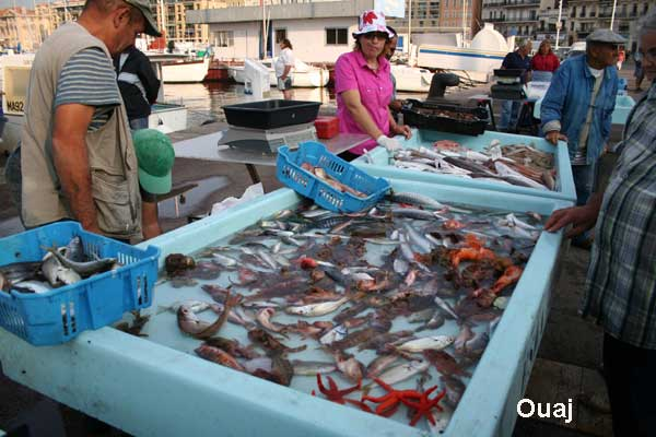 Le vieux port marseille photos et hotels marseille sur - Restaurant poisson marseille vieux port ...